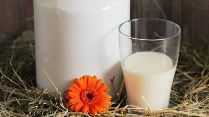 ¡Ten cuidado! Estos son los riesgos de tomar leche 'natural' y sin pasteurizar