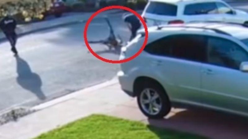 VIDEO: ¡Al suelo! Niño ladrón recibe golpiza tras fallido intento de robo a mano armada