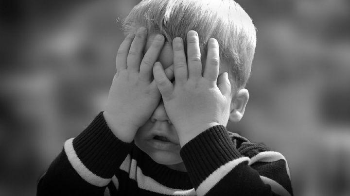 Impactante: El estrés en la infancia y adolescencia modificaría el cerebro de las personas