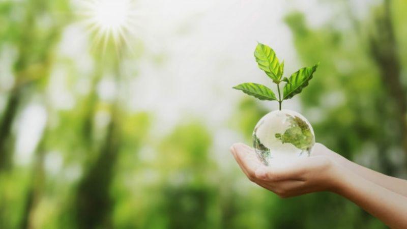 Aprende cómo cuidar al planeta desde casa en este Día de la Tierra