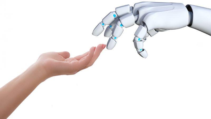 ¡De no creerse! Científicos crean un robot que beneficia la salud emocional