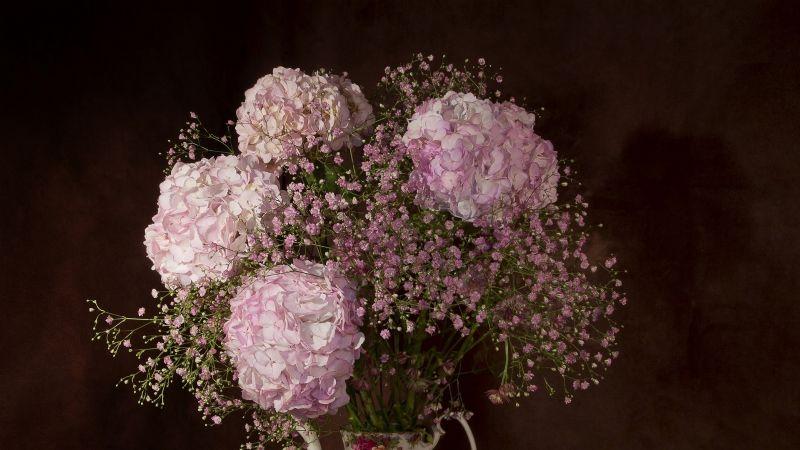 ¡Ya viene el día de las madres! Descubre algunas flores que podrías regalarle el 10 de mayo