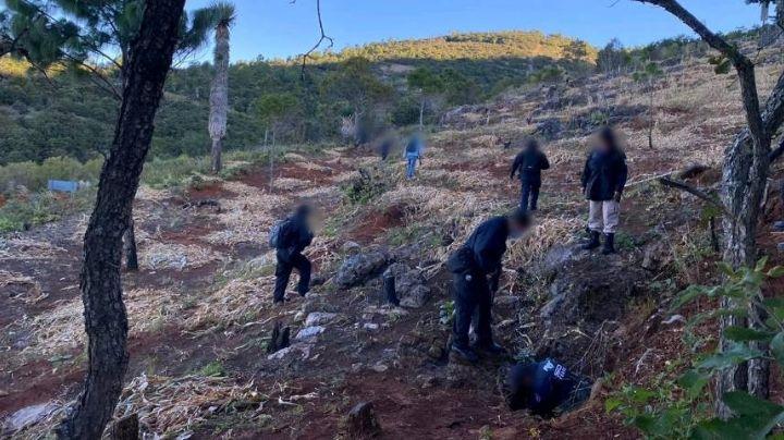 Violencia en Oaxaca: Enfrentamiento en la Sierra Sur deja saldo de 6 muertos y 3 heridos