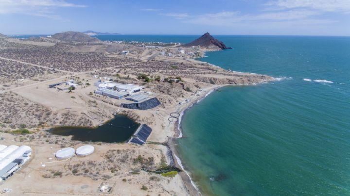 Lluvias y granizo: Así será el clima en Sonora este lunes 26 de julio, según la Conagua