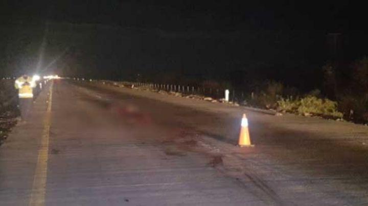Muere hombre atropellado en la carretera Empalme-Obregón; los carros que pasaban lo despedazaron