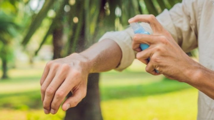 Olvídate de las picaduras de mosquitos: Así debes escoger tu repelente, según Avon México