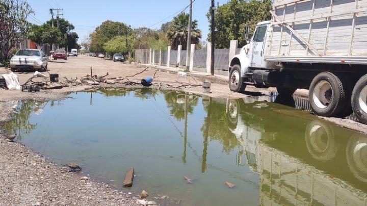 ¡Urge solución! Colonia Valle Dorado en Ciudad Obregón vive entre aguas negras