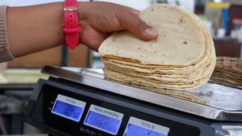 ¡Por las nubes! Precio de la tortilla a la alza; Profeco ubica costo más alto en Sonora