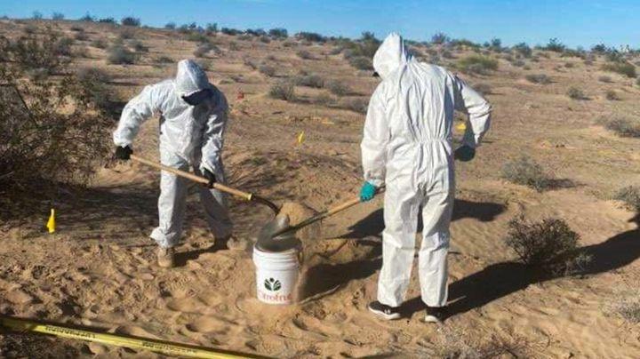 Nogales: Descubren tres cadáveres esqueléticos enterrados en fosas clandestinas