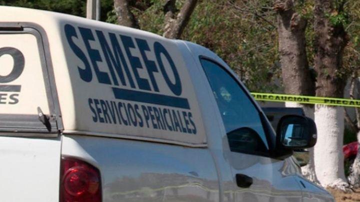 De terror: Localizan cinco cuerpos en Michoacán; habrían sido asesinados a tiros