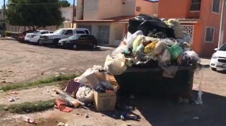 Servicio de recolección de basura falla en el Puerto, ciudadanos piden que PASA 'se vaya'