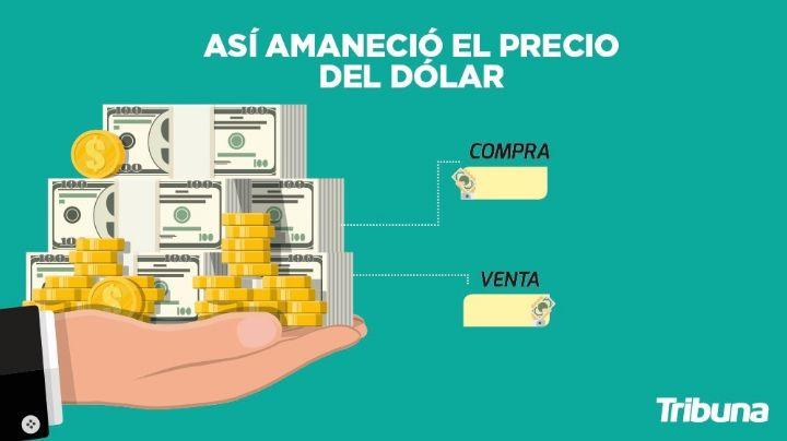 ¡Buenas noticias! Este es el precio del dólar, al tipo de cambio actual, este viernes 11 de junio
