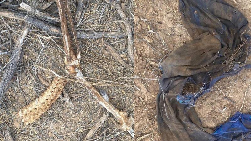 Sonora: Restos hallados en predio de Hermosillo serían de un hombre desaparecido desde 2020