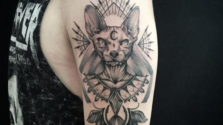 Lleva el amor gatuno en la piel con estas ideas de tatuajes para hombres en el brazo