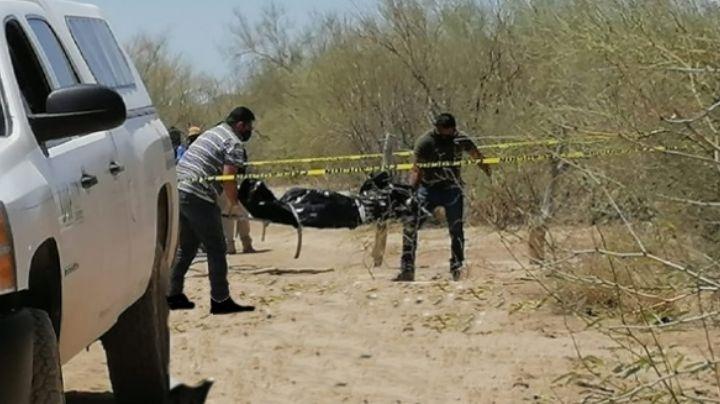 Encuentran cuerpo descompuesto en Caborca; estaba encobijado y tenía impactos de bala