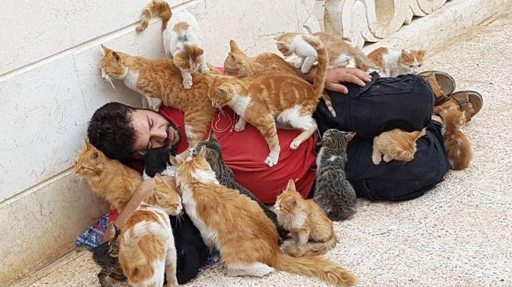'El Hombre Gato de Alepo', el activista que rescata mascotas sin hogar en tiempos de guerra
