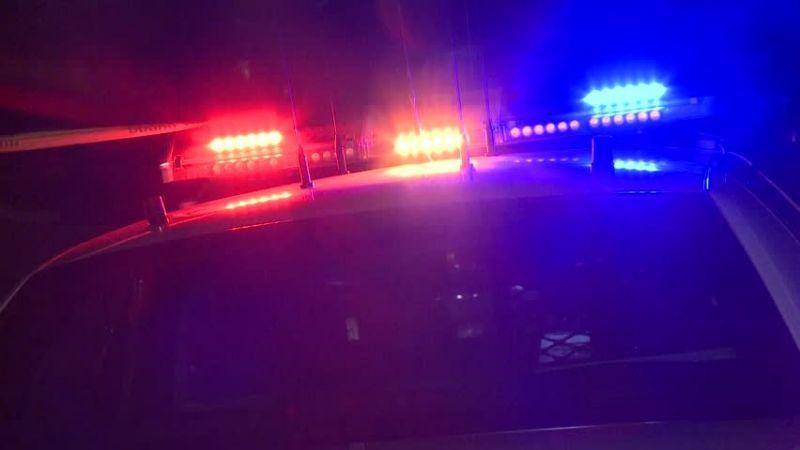 Trágico desenlace: Niña de 4 años muere tras dispararse por accidente con una pistola