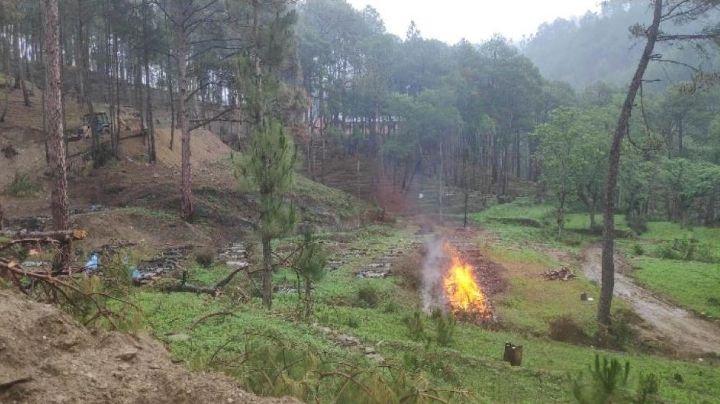 FUERTES IMÁGENES: Familias queman cadáveres en un bosque; los crematorios están desbordados