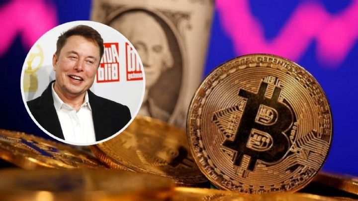 Estafadores que se hacen por Elon Musk defraudan con 2 millones de dólares en criptomonedas