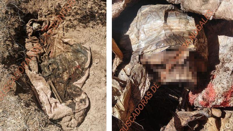 Escalofriante hallazgo en Nogales: Localizan cadáver esquelético envuelto en cobija