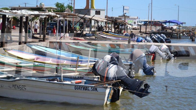 Pescadores de Guaymas optan por otras ocupaciones ante veda de especies marinas