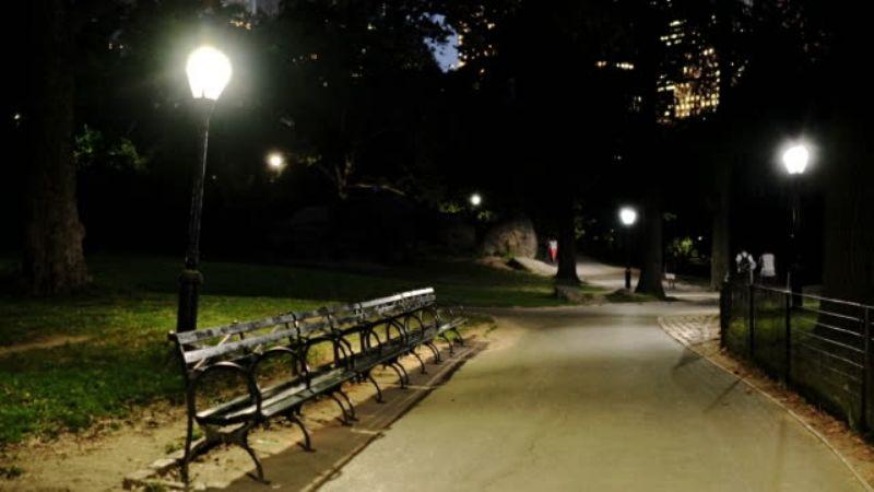 """Ataque en Central Park: Policía busca a un violador que utilizaba """"joyería extraña"""""""