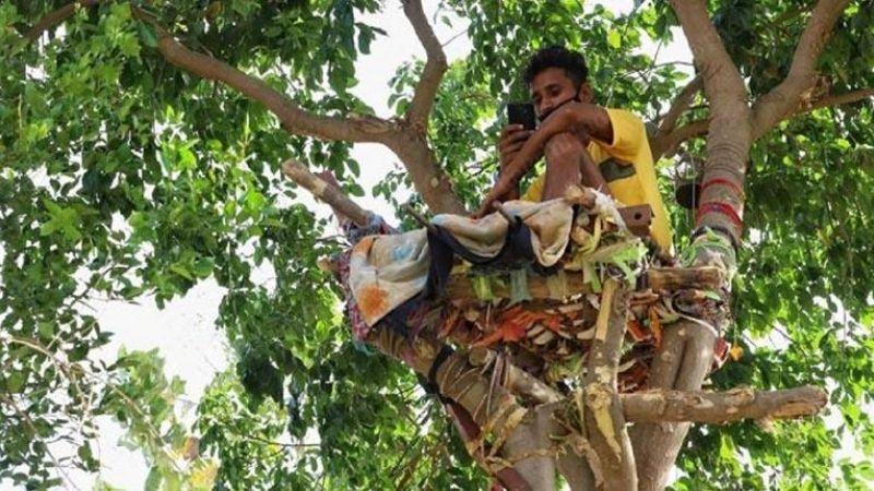 Llevan al hospital a enfermo Covid-19; vivió 11 días en un árbol para no contagiar a sus padres