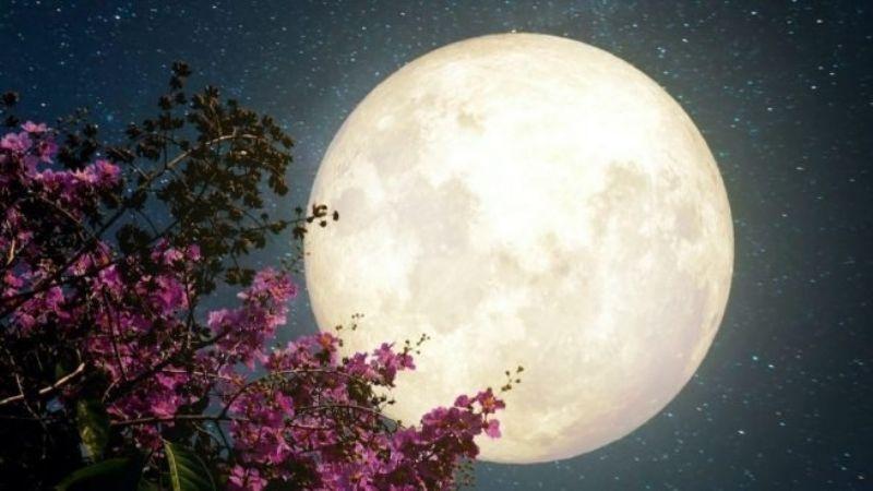 Prepárate para el 26 de mayo: ¿Cómo afectará la superluna de flores a los signos zodiacales?