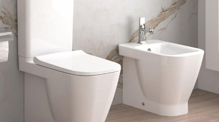 ¡Tecnología de vanguardia! Crean baño inteligente: toma FOTOS a las heces para analizarlas