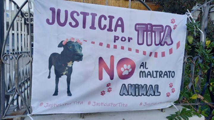"""Piden justicia para un 'perrito' asesinado; el sargento le disparó porque """"le ladró"""""""