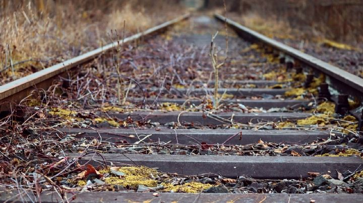 Hallan cuerpo desmembrado en vías del tren; se desconoce si era hombre o mujer