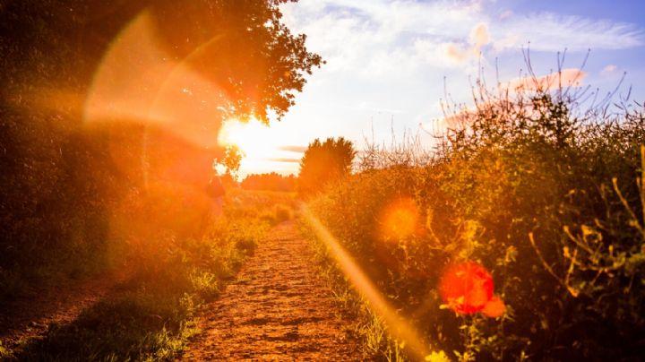Clima Sonora: ¡Saca el protector solar! Hay índice alto de rayos UV este lunes 3 de mayo