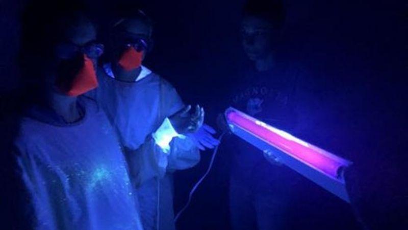 Expertos piden no desinfectar el hogar con luz ultravioleta para eliminar al Covid-19