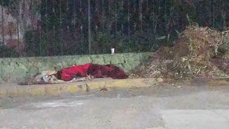 Descubren cadáver 'encobijado' al sur de Nogales; presentaba huellas de violencia