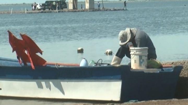 """""""Estamos con el corazón roto"""": Familia y colegas se manifiestan por los pescadores desaparecidos de Yavaros"""