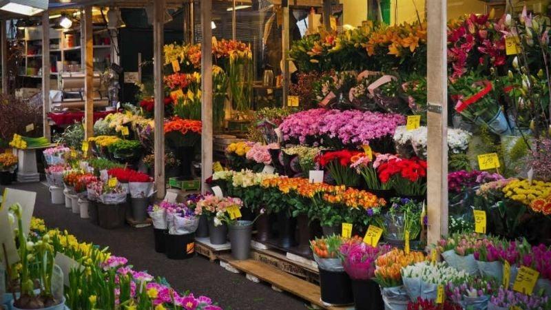 Productores de flores prevén ventas de 10mmdp el próximo Día de las Madres