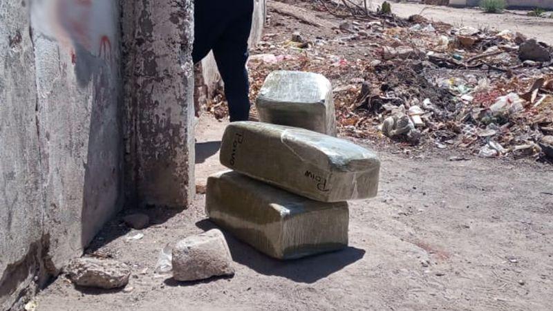 Autoridades confiscan 37 kilos de marihuana en Navojoa; estaban ocultos en casa abandonada