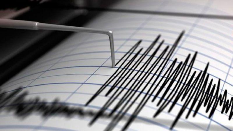 Dos sismos de 4.2 y 4.2 grados Richter sacudieron a Puerto Peñasco