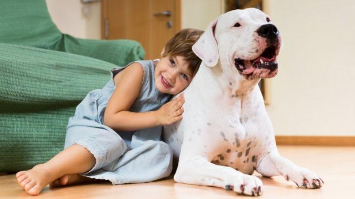 Demuestra la grandeza de tu mascota con estos nombres para perros grandes