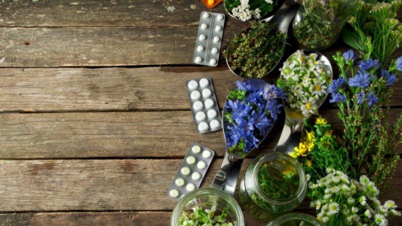 Alivia algunos malestares físicos con ayuda de estas asombrosas plantas medicinales