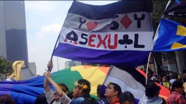Mes del Orgullo LGBT+: No creerás el poderoso significado de la bandera asexual