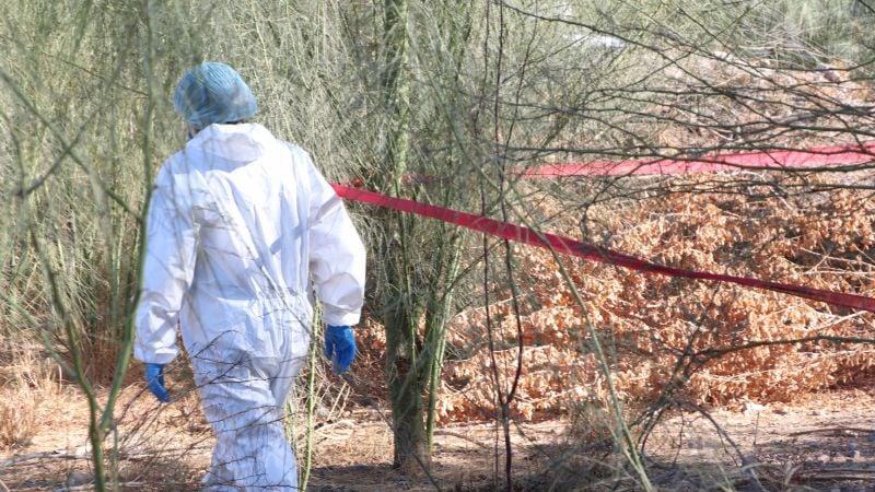 Sonora: Difunden lista de 31 cadáveres de desaparecidos sin identificar en morgue de Guaymas