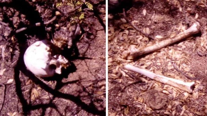 Macabro hallazgo: Localizan restos de hombre desaparecido en Nogales; difunden FOTOS
