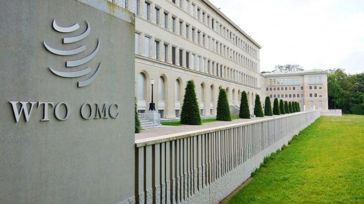 OMC: Advierte rezago económico en América Latina por débil estrategia de vacunación