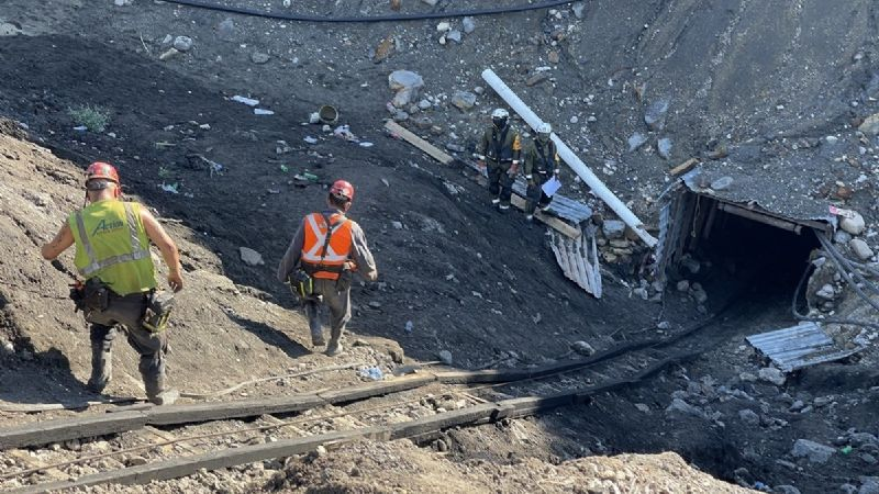 'Amigos fieles': Los perritos que esperan a sus dueños; mineros fallecidos en la mina de Múzquiz