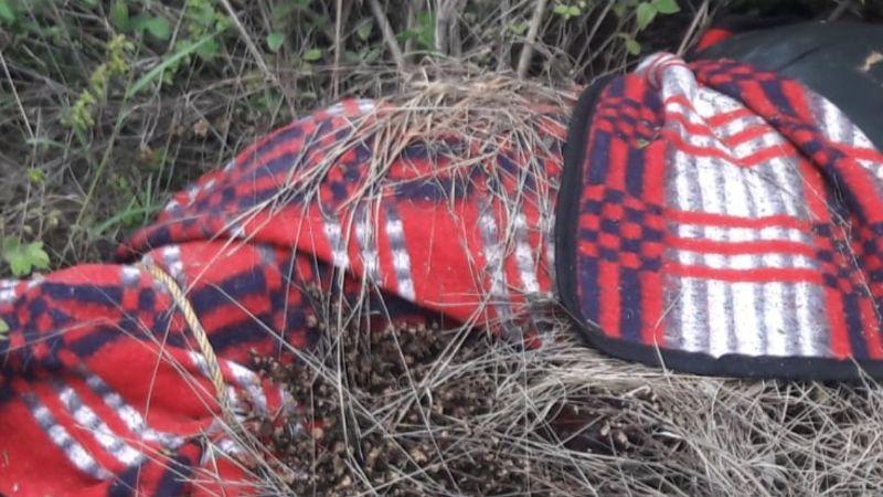 Sonora: Mandan foto de 'encobijado' a madre que busca a su hijo desaparecido; era extorsión