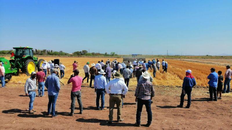 Aoaas lleva a cabo demostración de sembradoras para Agricultura de Conservación