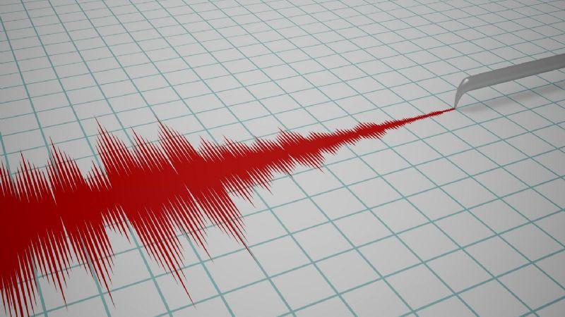 Alerta en Chiapas: Fuerte sismo de magnitud 5.4 golpea Venustiano Carranza