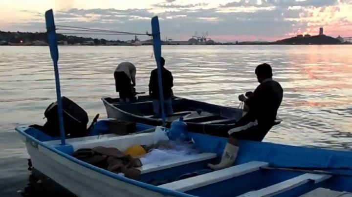 ¡Macabro! Pescadores encuentran cuerpos flotando en el mar de Guaymas