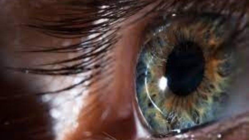 De impacto: Esto es lo que dicen tus pupilas sobre tu inteligencia y la de las personas